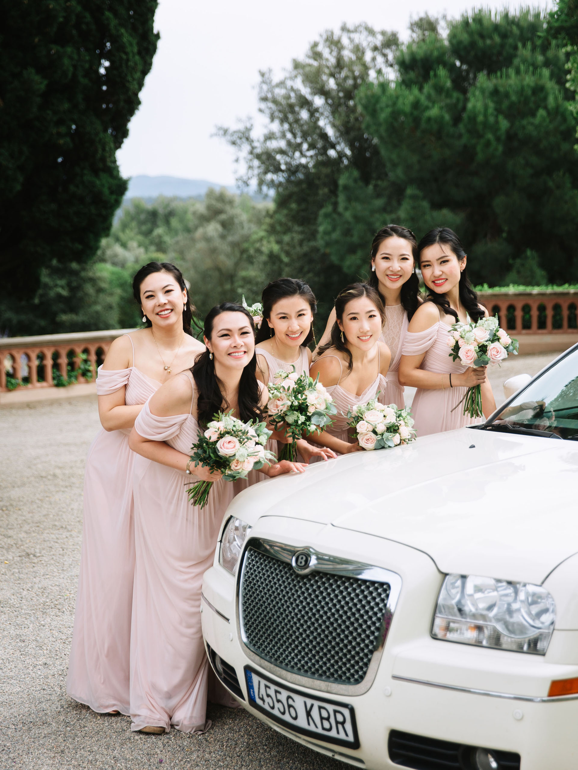 bridesmaid-dream-wedding